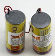 Actaris 600143-011 Battery (2 Pack)