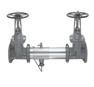 """Watts 0792324 Reduced Pressure Zone Assembly 10"""" (957-DNRS)"""